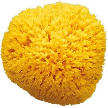 Bilde av OKBaby Badesvamp, Honeycomb