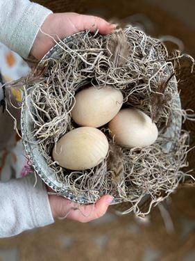 Bilde av Sagababy Egg i Tre